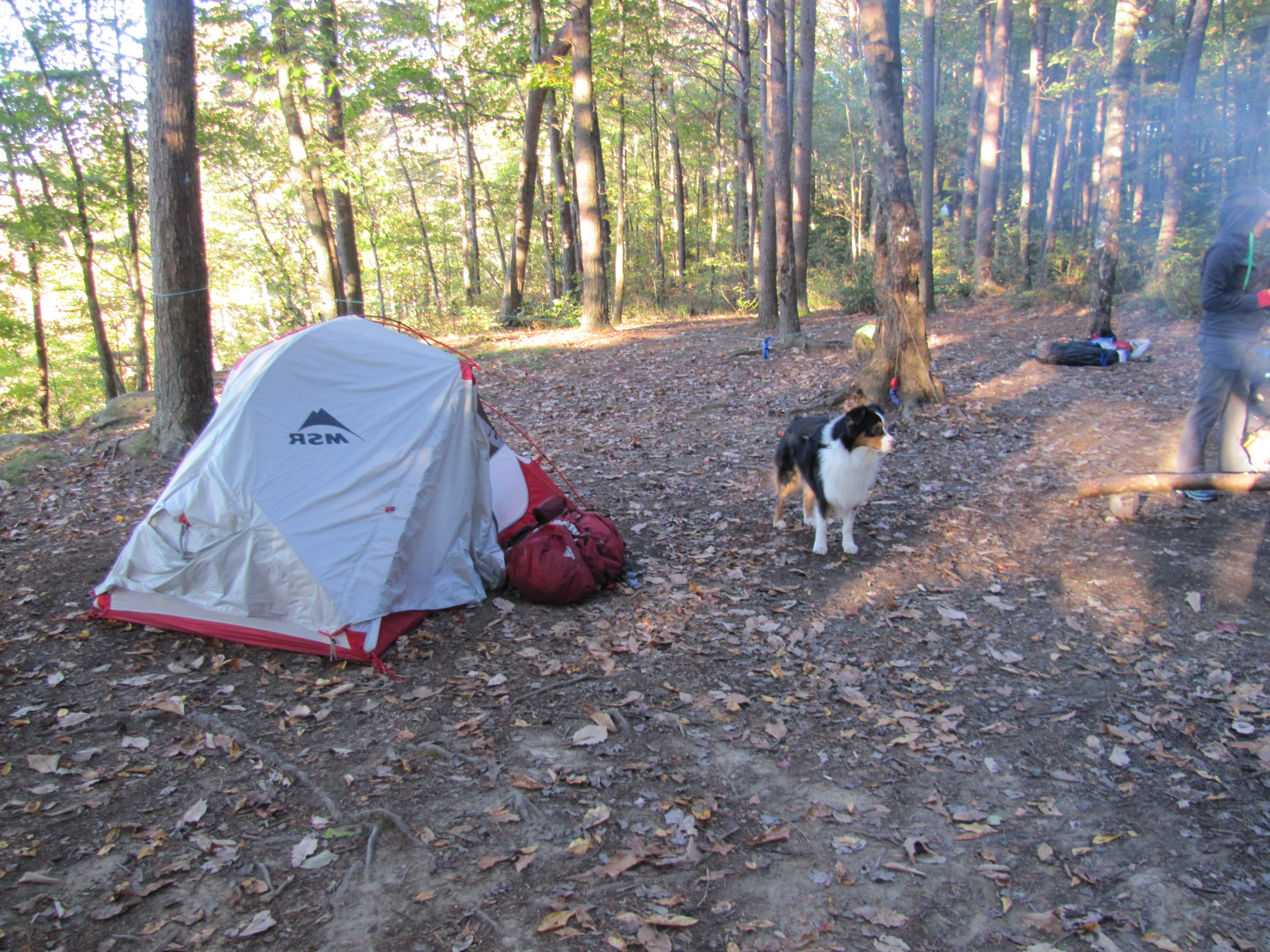 Savage Gulf Natural Area Primitive Camps – Midlife Hiking Club on tennessee state parks map, savage gulf hiking trails map, alabama gulf shores state park map, gulf state park backcountry trail map, gulf state park camping map, rock island state park map,